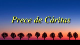 getlinkyoutube.com-PRECE DE CÁRITAS