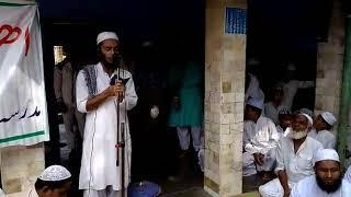 Hindustani tarana
