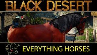 getlinkyoutube.com-[Black Desert Online] Guide: Everything Horses