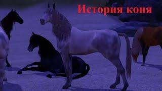 getlinkyoutube.com-Симс 3 - ДИКИЕ ЛОШАДИ (История коня)