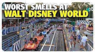 WORST Smells at Walt Disney World   Best and Worst   06/06/18