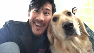 getlinkyoutube.com-A Day With Chica - Part 1