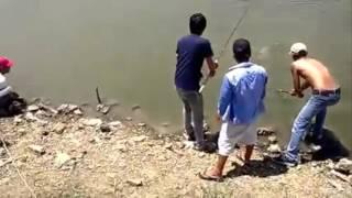 Orang ini Mancing Lele Raksasa di Danau, Gimana Serunya?