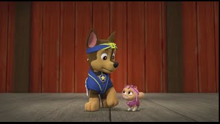 Paw Patrol Pup Fu Clip 2 Rocky Chase Rubble New Game  Щенячий патруль Кунг Фу Щенки Фу чаcть 2
