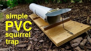 getlinkyoutube.com-How to make ● a humane PVC SQUIRREL TRAP (that works!)