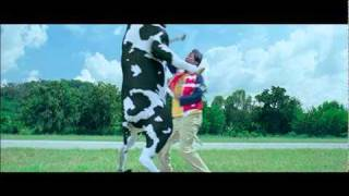 getlinkyoutube.com-Crazy Cow Fight
