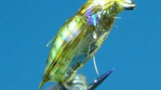 getlinkyoutube.com-Tying a Small Chunky Caddis Pupa by Davie McPhail.