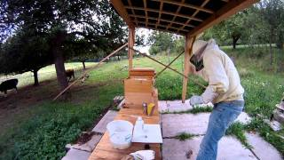 getlinkyoutube.com-AS 60 % Schwammtuch Methode Varroabehandlung Imkerei