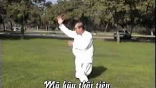 getlinkyoutube.com-Tai Chi   thai cuc chuong part 3 of 3