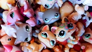 getlinkyoutube.com-My Littlest Pet Shop Collection! (Part 1)
