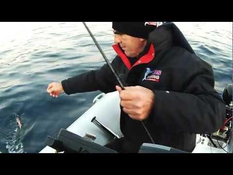 squid ΚΑΛΑΜΑΡΙΑ ΚΑΙ Η ΑΡΜΑΤΩΣΙΑ sotos fishing.wmv