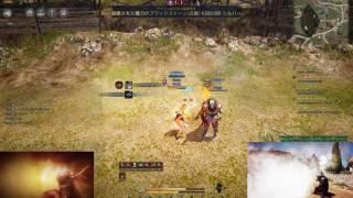 【黒い砂漠】椿vs忍者 BlackDesert pvp awakening Maehwa vs Ninja