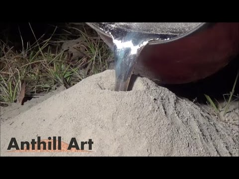 Anthill Art