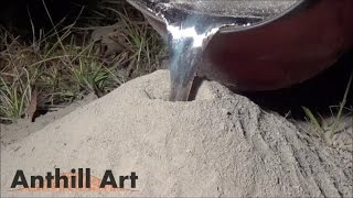 getlinkyoutube.com-Casting a Fire Ant Colony with Molten Aluminum (Cast #043)