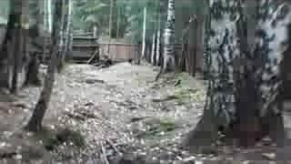 getlinkyoutube.com-Jagdterrier & boar # 2