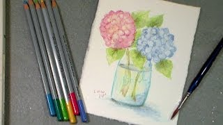 getlinkyoutube.com-watercolor pencil hydrangea