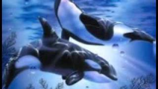 getlinkyoutube.com-Pod wodą, Muzyka Zbigniew Preisner