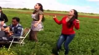 getlinkyoutube.com-شعبي عربي مغربي  مع العلامي الخريبكي - chaabi arabes maroc