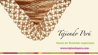 getlinkyoutube.com-Chal (shawl) o punta tejido en dos agujas con borde en nudo salomón