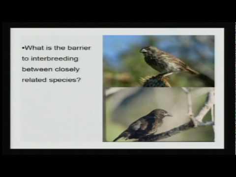 達爾文的傳承 講座