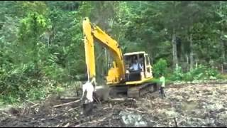 getlinkyoutube.com-Excavator stuck face-first in deep mud with operator still inside