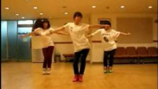 SNSD - Gee Dance [Slow+Mirrored]