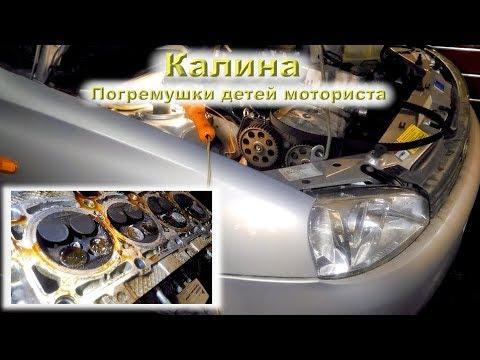 Калина: Погремушки детей моториста