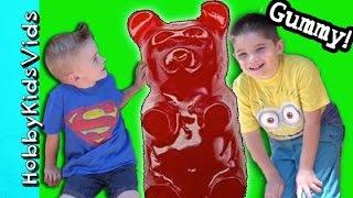 getlinkyoutube.com-SURPRISE BUCKET Hobby Craft Day! Make Gummy Bears Worms Fish by HobbyKidsVids