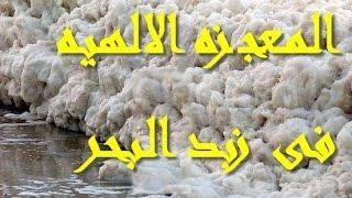 getlinkyoutube.com-المعجزه الالهيه فى زبد البحر والتي اكتشفها العلماء وتم ذكره فى القران الكريم