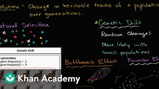 Genetic drift, bottleneck effect and founder effect | Biology | Khan Academy