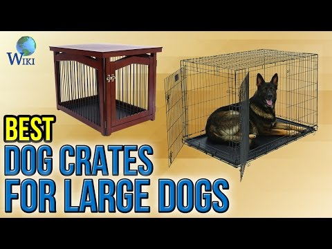 8 Best Dog Crates For Large Dogs 2017