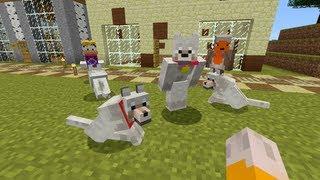 getlinkyoutube.com-Minecraft Xbox - Pick A Pet  [111]