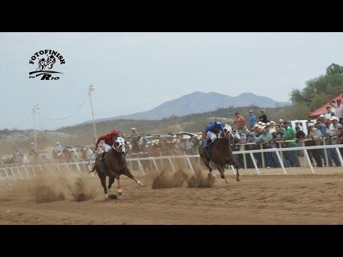 Carreras de Caballos Hipodromo de Rayon FINAL DEL MATURITY 2014