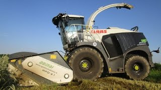 "getlinkyoutube.com-Triticale 2016: Claas Jaguar 980 ""The Black Beast"" & Domai Mpd 611 - Agrotecnica Fraron"