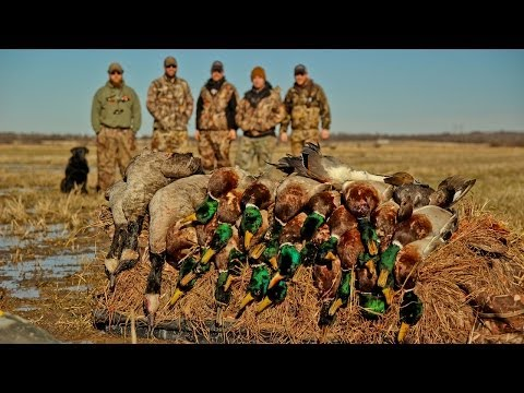 Duck Hunting: A Step Behind - Fowled Reality