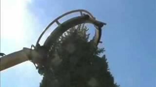 getlinkyoutube.com-Dutchman Tree Tyre