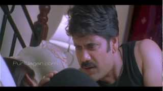 Nagarjuna Rakshitha Romantic Comedy Scenes - Shivamani width=