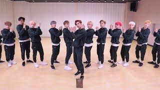 SEVENTEEN (세븐틴) - 박수 (CLAP) Dance Practice (Mirrored)