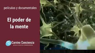 getlinkyoutube.com-El PODER de la MENTE - FÍSICA CUÁNTICA - Camino Conciencia