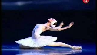 getlinkyoutube.com-The Dying Swan