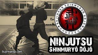 getlinkyoutube.com-Ninjutsu | Shiken Gata (Combate Real) - Defesa Pessoal (Self Defense)