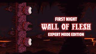 getlinkyoutube.com-Terraria 1.3.1 - [Expert Mode Speedrun] Wall of Flesh on First Night