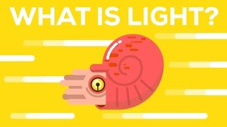What Is Light? width=