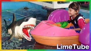 getlinkyoutube.com-상어밥주기? 라임탐험대 물고기를 잡아라! 제주도 상어가족 shark attack サメの攻撃 LimeTube & Toy 라임튜브
