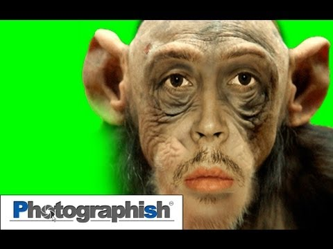 MORPHING EFFECT -Photoshop Tutorial by Philipp Hebold-
