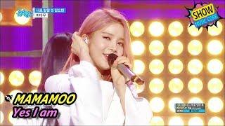 [Comeback Stage] MAMAMOO - Yes I am, 마마무 - 나로 말할 것 같으면 Show Music core 20170624