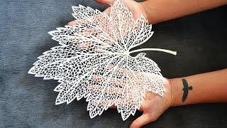 getlinkyoutube.com-Leaf