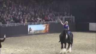 getlinkyoutube.com-Shire Horse Hengst Tom auf der Equitana 2015