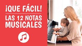 2. Las 12 Notas Musicales Explicadas Paso a Paso (Teoría Musical Fácil)