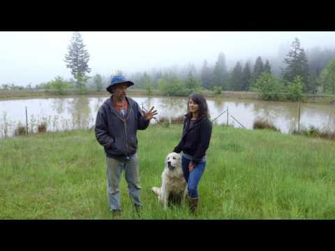 22 Cougar Mountain Farm